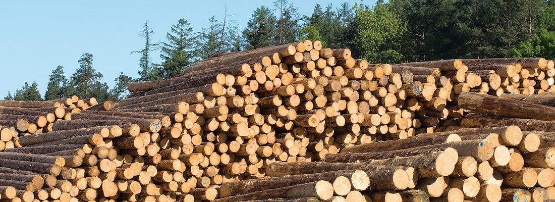 medienos-apdirbimas-2